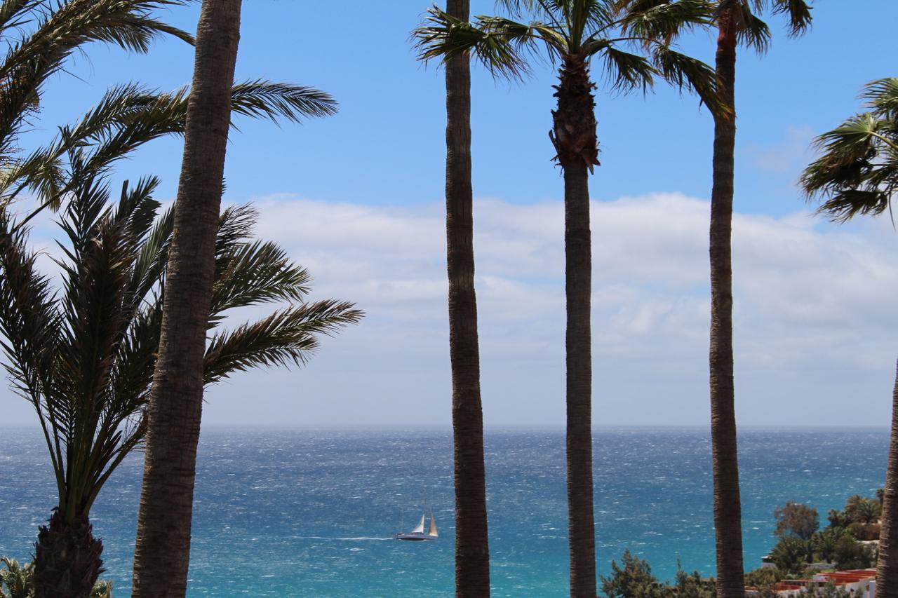 Hinaus aufs Meer. Zum Segeln, Angeln und mehr auf Fuerteventura.