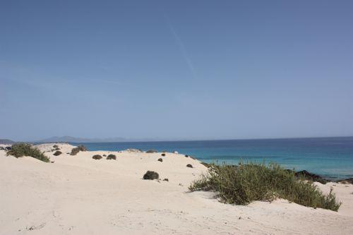 Die schönsten Strände auf Fuerteventura sind überall.